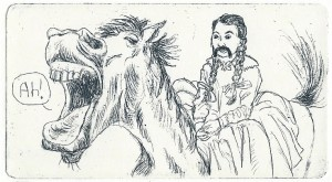 santa barba 8
